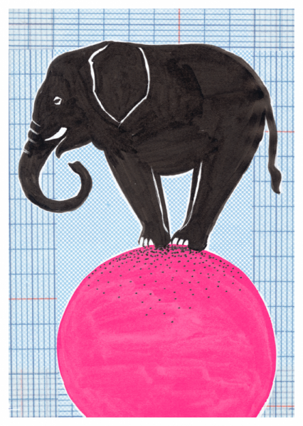 Circus-Elefant